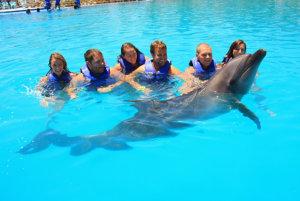 ¿Estás listo para nadar con delfines en Los Cabos