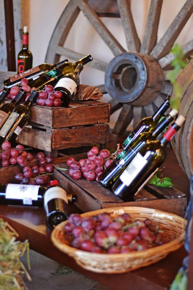 Festival del queso & vino